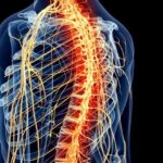 Why does central nervous system (CNS) fatigue happen during strength training?