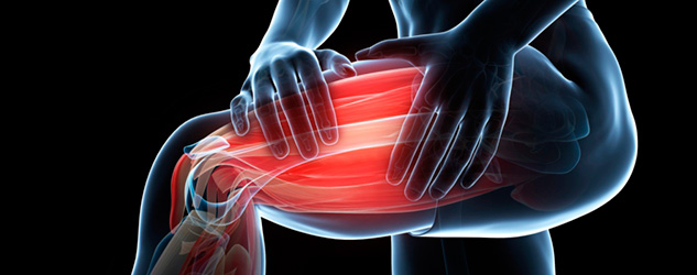 muscle recovery image
